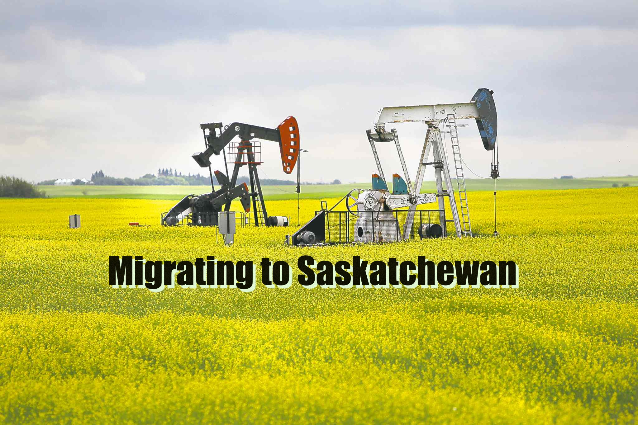 An Almost Worrying Number of People Are Migrating to Saskatchewan, Canada due to this ONE reason..