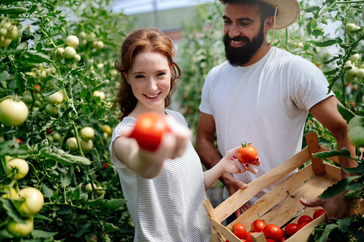 [BREAKING]: Canada Set to Launch a Dedicated Agri-Food Industry Immigration Program!