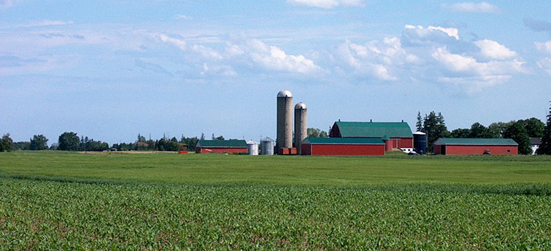 BREAKING: Ontario is creating a New Immigration Program for Rural & Smaller Communities