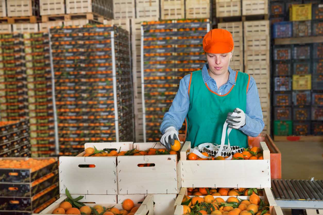 Canada's Food Processing Sector: An Excellent Opportunity for Immigrant Workers